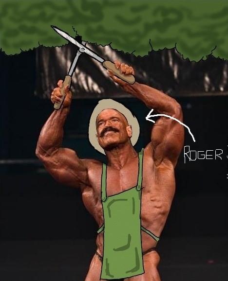 roger 3